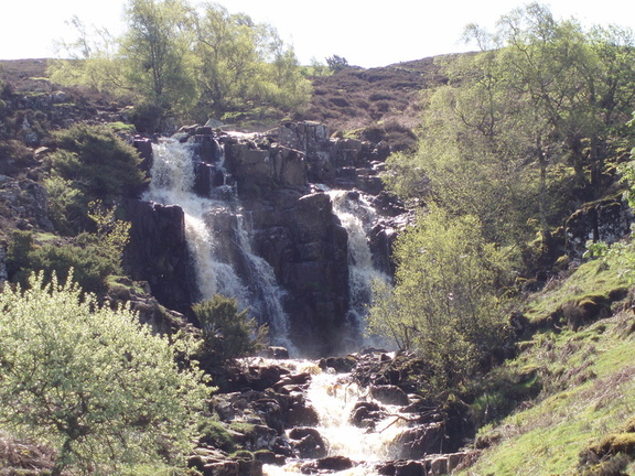 Bleabeck force