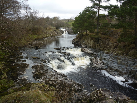 Low Force